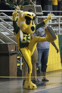 Wildlcat Willy has been cheering on his fellow 'Cats and marching in NMU parades for over 30 years. Five secret students bring Willy to life at events. (Photo: Anthony Viola)