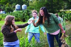 Senior outdoor recreation major Jasmine Dewys (right) of the Tree Musketeers helps to harvest plants with environmental science major, junior Summer Star (left) at Seeds & Spores in Skandia on Saturday, Sept. 21. (Photo: Kristen Koehler)