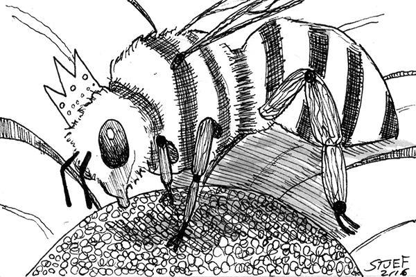 re-Bee_cartoon